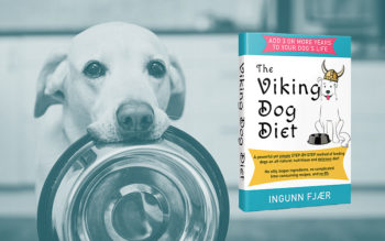 Viking Dog Diet Review