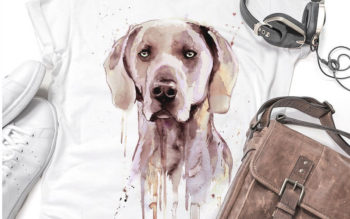 Weimaraner Themed Gifts For Any Budget